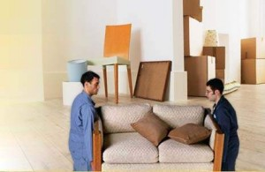 Furniture Removal and Relocation Service in Dunedin