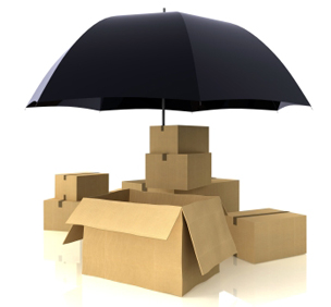 Goods in Storage and Insurance